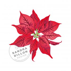 Sandra Dillon Design Christmas Poinsettia Multi-colour Stencil